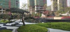 品质小高层,6.5-7.3米超大阳台,实景绿化呈现