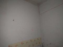 1室1厅1卫417元/月45m²出租