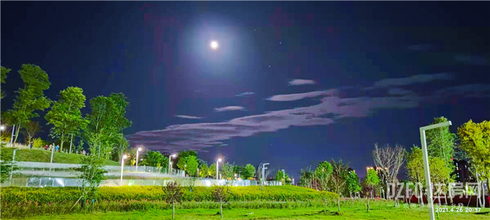 滨江·四季花城
